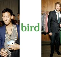 Bird-nyc
