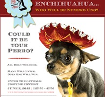 The Whole Enchihuahua!