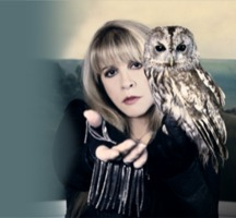 An Evening with Stevie Nicks