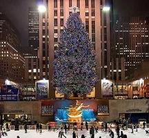 Rockefeller-tree-2014
